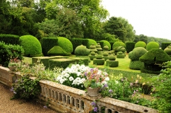 Топиарный сад - топиарный сад